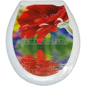 Сиденье для унитаза (жесткое) ОКЕАН Красная гербера (10)